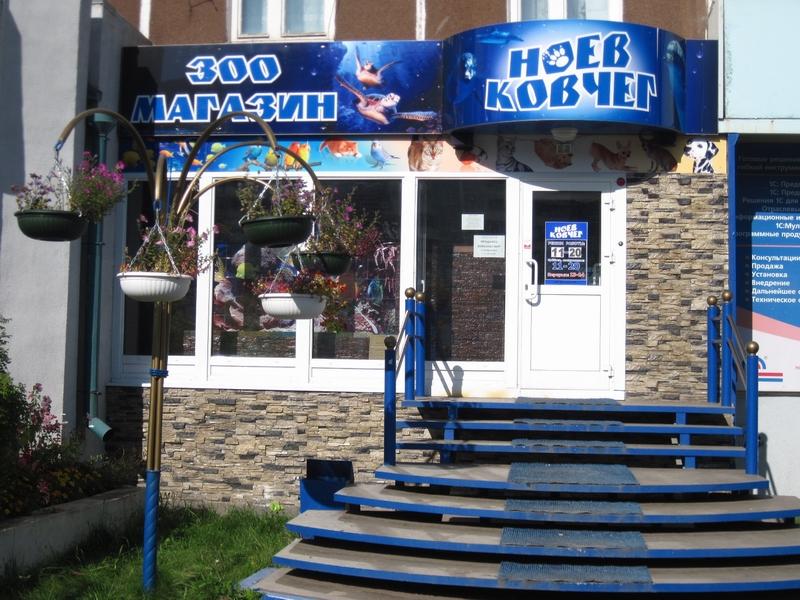 """МР """"Левша"""", г.Братск - Вывески: Зоомагазин """"Ноев ковчег"""""""